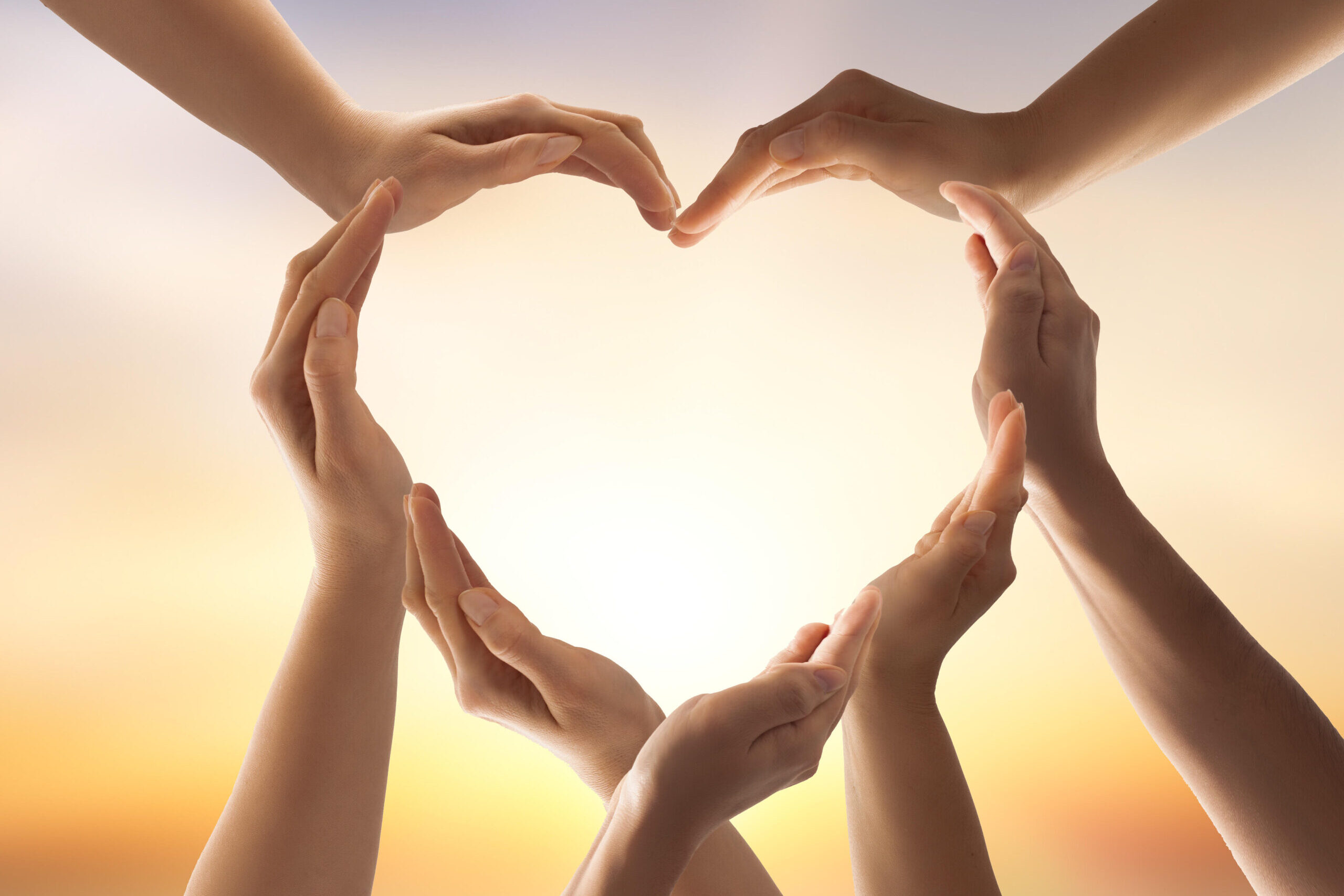 Symbol and shape of heart created from hands.The concept of unity, cooperation, partnership, teamwork and charity.